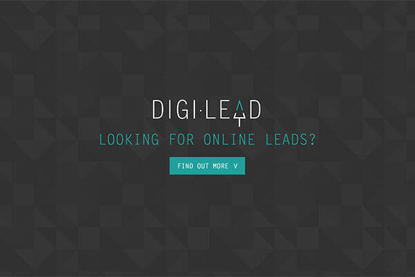 Digilead - Web Development